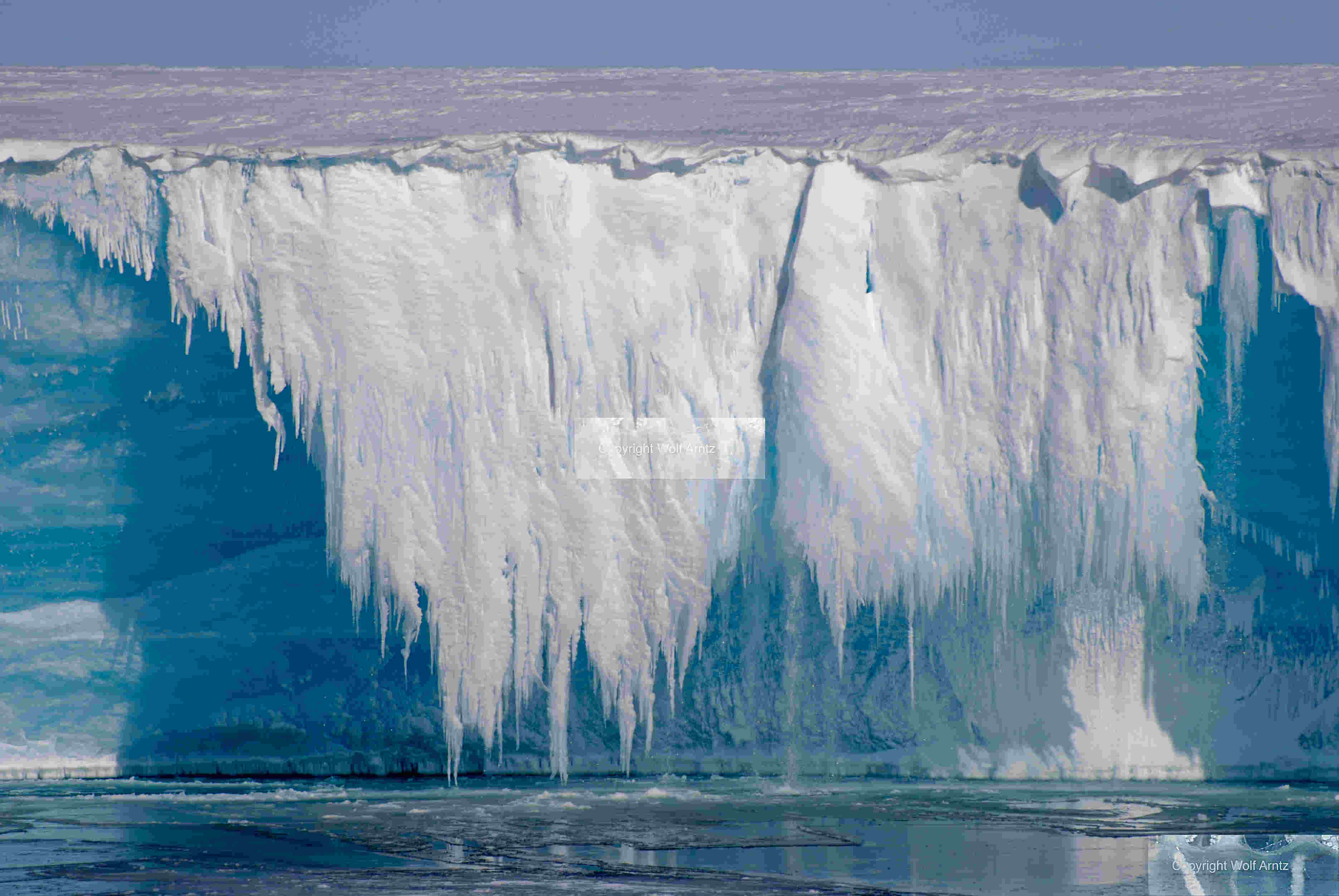 """Petzi"" – Antarktikreisender – ein paar Photos | Post aus ..."