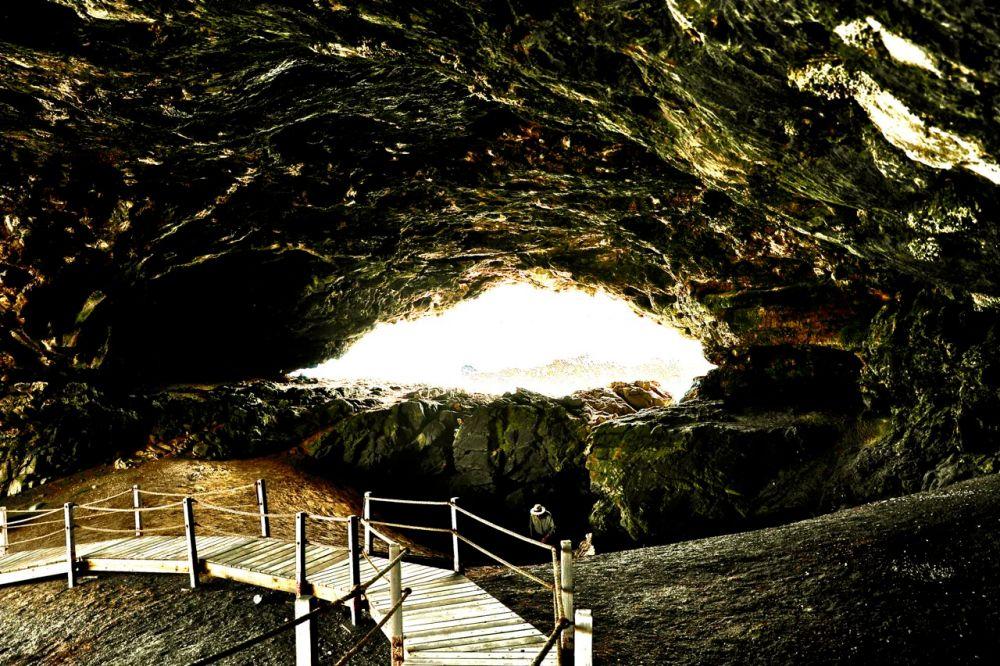 Cave of our ancestors (3/6)