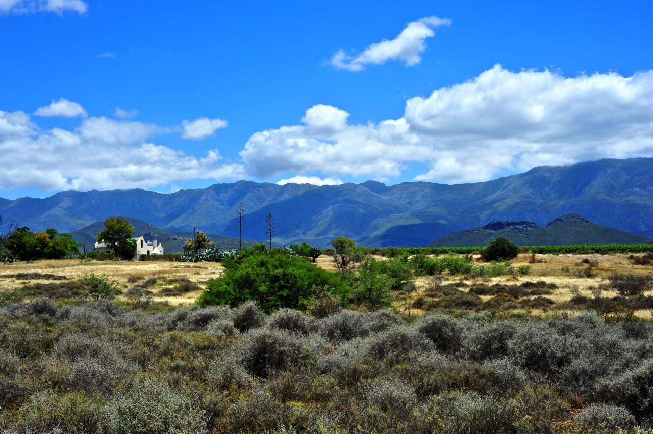 Farmstead near Robertson, Western Cape/South Africa